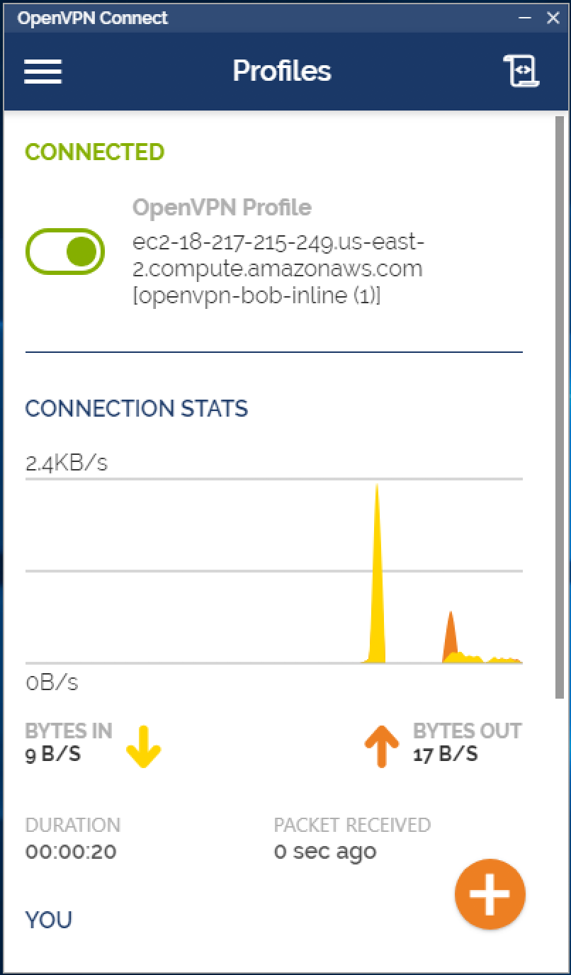 openvpn-connect.png